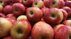 Een massa van rode appel & x28; closeup& x29; Stock Afbeelding