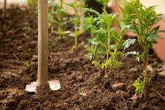 Een materiaal voor handboek graaft een gat om bomen te planten Royalty-vrije Stock Afbeelding