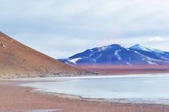 Een meer bij de woestijn Stock Fotografie