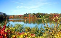 Een meer in de herfst stock afbeeldingen
