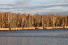 Een meer in de winter Stock Afbeeldingen