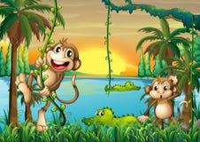 Een meer met krokodillen en apen het spelen stock illustratie