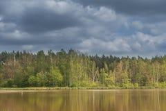Een meer onder bossen stock afbeelding