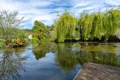 Een Meerscène - Tasmanige - Australië Royalty-vrije Stock Afbeeldingen