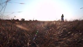 Een meisje bevindt zich onbeweeglijk op een gebied, rond een geel, gebrand gras, gelijkend op gele tarwe De windbewegingen, trekt stock videobeelden