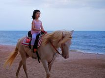 Een meisje die een wit paard berijden door het strand stock afbeelding