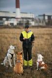Een meisje en drie honden die op het de herfstgebied zitten royalty-vrije stock foto's