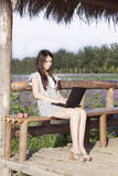 Een meisje en een computer Stock Afbeelding