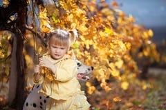 Een meisje en haar hond in wijngaard Stock Afbeelding