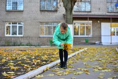 Een meisje in een groen jasje verzamelt gele bladeren in de herfst stock afbeeldingen