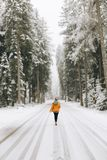 een meisje in het de winterbos Royalty-vrije Stock Fotografie