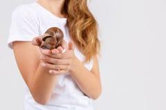 Een meisje houdt ahatina in haar uitgestrekt handclose-up op een grijze achtergrond stock foto