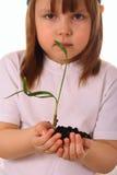 Een meisje houdt een installatie zorvuldig in haar handen Stock Afbeelding