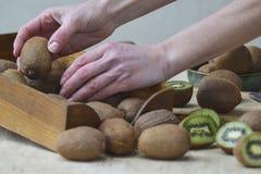 Een meisje houdt rijpe kiwi Demonstratie van fruit stock afbeeldingen