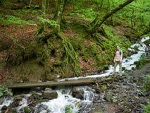 Een meisje met een rugzak op een toeristensleep in het bos dichtbij de stroom royalty-vrije stock afbeelding