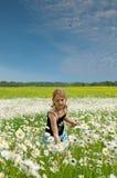 Een meisje op het Gebied van het Klaverblad Royalty-vrije Stock Afbeeldingen