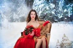 Een meisje in een sprookjebeeld van een koningin stelt in de snow-covered winter bos Lange rode kleding, boeket van vruchten, rod stock fotografie