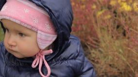 Een meisje wat betreft multicolored installaties op een bloembed in een park stock footage