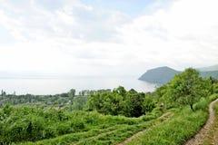 Een mening aan meer Ohrid Stock Afbeeldingen