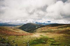 Een mening bij een Peruviaans landschap Stock Afbeeldingen