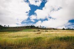 Een mening bij Peruviaans landschap Stock Afbeelding