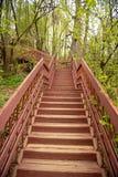 een mening, die omhoog voor de bovenkant van een lange houten die ladder kijken in een bosdieDeel van een wandelingssleep wordt e royalty-vrije stock foto