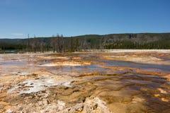 Een mening die van stoom van de caldera bij yellowstonepark toenemen royalty-vrije stock fotografie