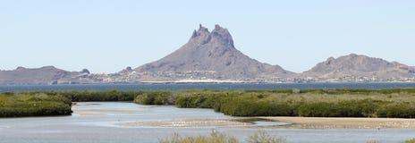 Een Mening die van Tetakawi-Piek boven San Carlos, het Overzees toenemen van Cort stock fotografie