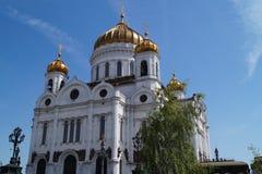 Een mening over Kathedraal van Christus de Verlosser stock foto
