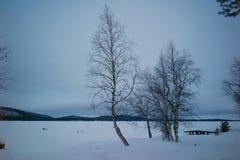 Een mening van bevroren meer in Lapland stock afbeeldingen