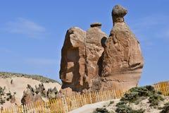 Een mening van Cappadocia-van nature gevormde rotsen kijkt als kameelnea royalty-vrije stock afbeelding
