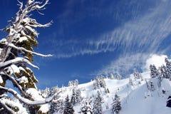 Een mening van de de winterberg Royalty-vrije Stock Foto's