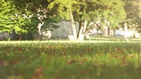 Een mening van de grond: meisjes die badminton op een zonnige dag spelen stock videobeelden