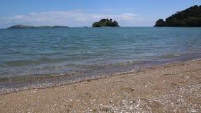 Een mening van de kust van Coromandel stock video
