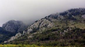Een mening van de rotsachtige bergen met een bos in Servië tegen Th stock fotografie