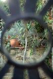 Een mening van de tuin Royalty-vrije Stock Fotografie