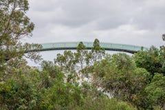 Een mening van een observatie het lopen brug in Koningenpark en Botani Royalty-vrije Stock Foto's