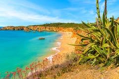 Een mening van een strand van Praia DA Rocha Stock Afbeeldingen