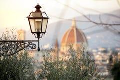 Een mening van Florence met de koepel van Brunelleschi ` s stock foto's