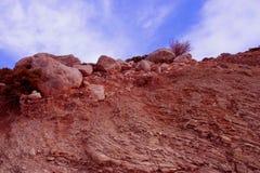 Een mening van grond, rotsen en wortels onder beauti Royalty-vrije Stock Afbeelding