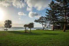 Een mening van het gebied van het de picknickgras van het Stadsstrand in Perth Stock Afbeeldingen