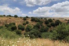 Een mening van het Overzees van Galilee van Onderstel Arbel Stock Afbeelding