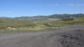 Een mening van het Targyn-dorp in Oostelijk Kazachstan en auto's op de weg Bergen van Oostelijk Kazachstan stock videobeelden