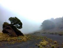 Een mening van Irazu Volcano National Park, Costa Rica Verscheidene vormen van aard u kunnen in deze prachtige plaats vinden stock foto's