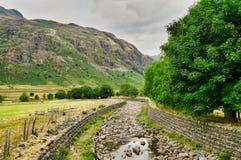 Een mening van Snoeken van Plisco, een berg in het Engelse Meerdistrict stock fotografie