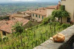 Een mening van Toscanië Stock Foto's