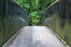 Een mening van een voetbrug in een bos royalty-vrije stock afbeeldingen