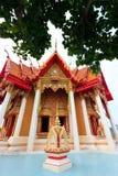 Een mening vanaf de bovenkant van de pagode, het gouden standbeeld van Boedha met padievelden en de berg, Wat Tham Sua (Tiger Cave Royalty-vrije Stock Foto