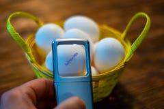 Een mens bekijkt sommige eieren in een mand en ontdekt een ei met salmonella's royalty-vrije stock fotografie