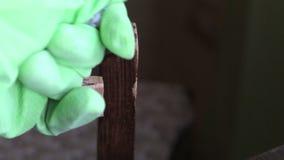 Een mens bereidt een twee-component epoxylijm voor Kneedt in de handen van de componenten om een plastic staat en een eenvormige  stock videobeelden